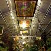 Cedar-House-Greenhouse-Abilene,KS